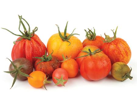 Tomato Time - Heirloom Varieties